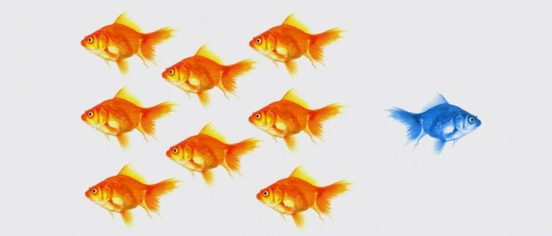 The new 4 P's of marketing: persistence, positioning, people and profitability