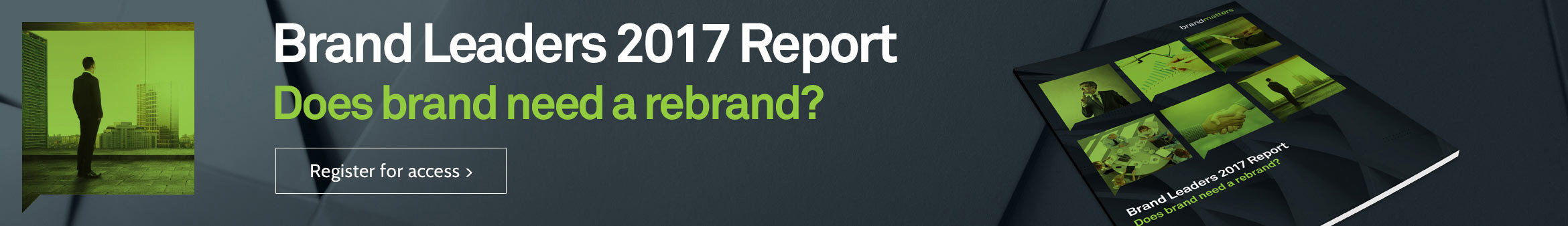 Brand Leaders 2017 Report Heading Banner