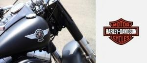 The Harley Davidson brand challenge - appealing beyond baby boomers